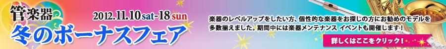 bnr_sale201211_900x100